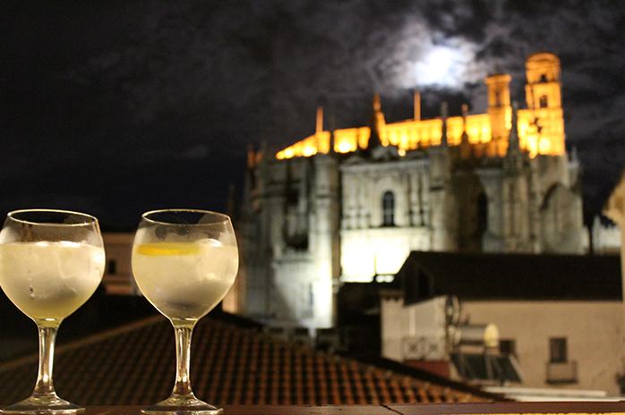 terraza_mirador_catedral_plasencia_palaciocarvajalgiron